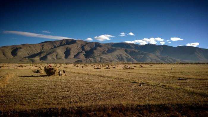 bondelandskap