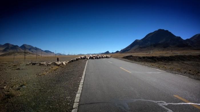 På vei mot Lalung passet
