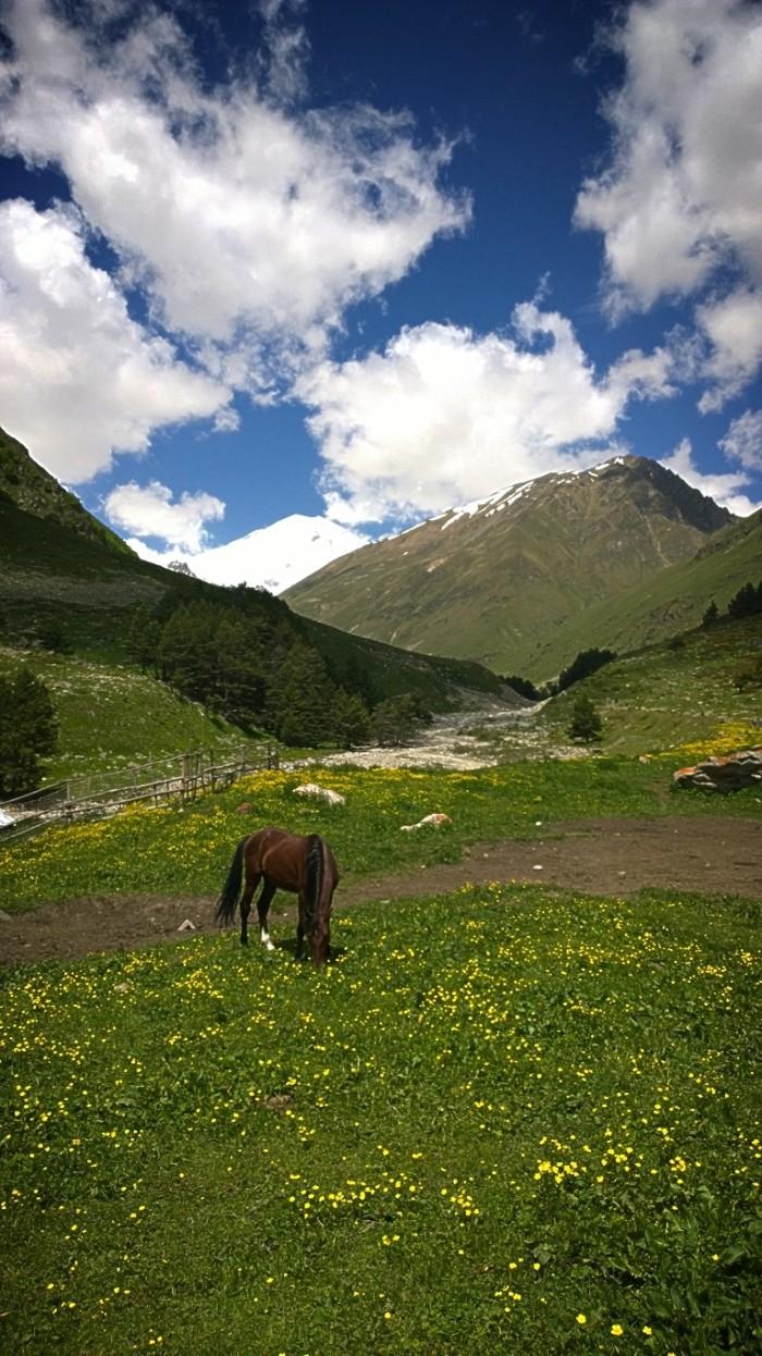 med utsikt mot Elbrus' øst topp. Og fler av oss fikk lyst å synge på 'Sound of music'