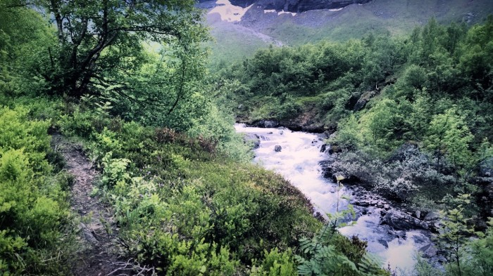 Landskapet forandrer seg og fjellgrunnen blir fastere