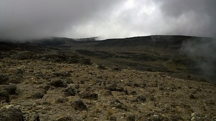 Alpin ørken
