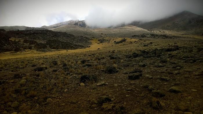 Et fascinerende dødt landskap